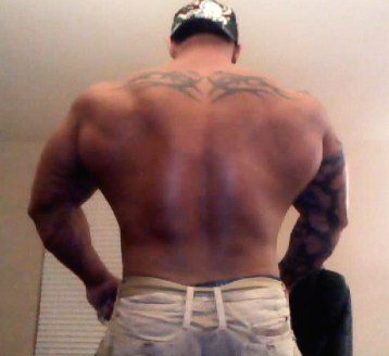 HUGE ALPHA BACK