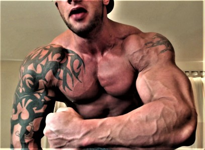 THE DEFINITION OF STRAIGHT SUPERIOR ALPHA MUSCLE