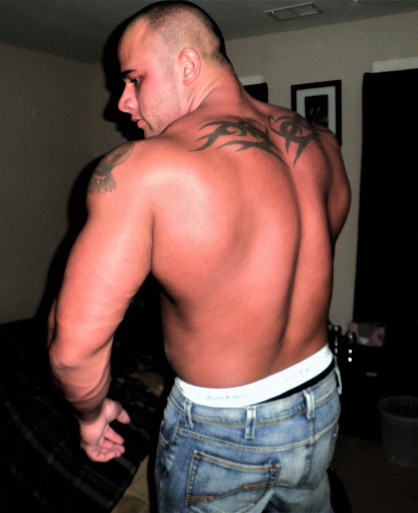 STUD MUSCLE BULL